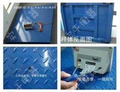 广东3吨电子地磅秤厂